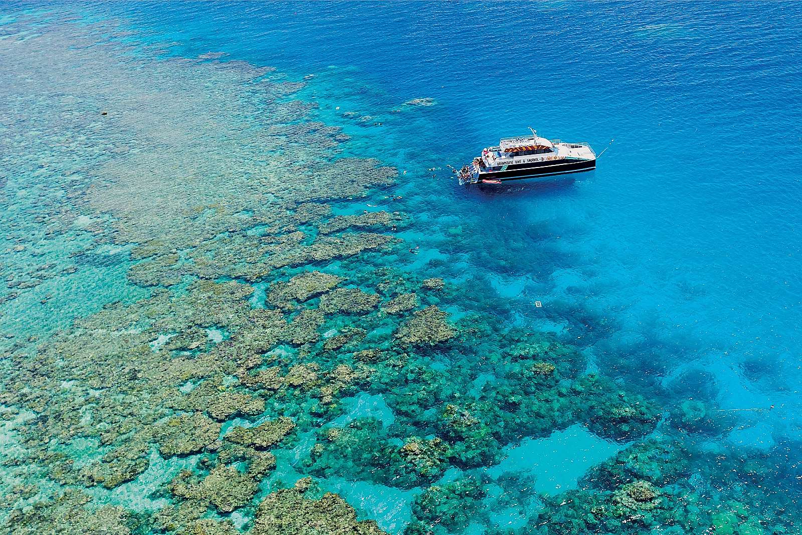 Feature image for Dreamtime  Dive Snorkelling Experience