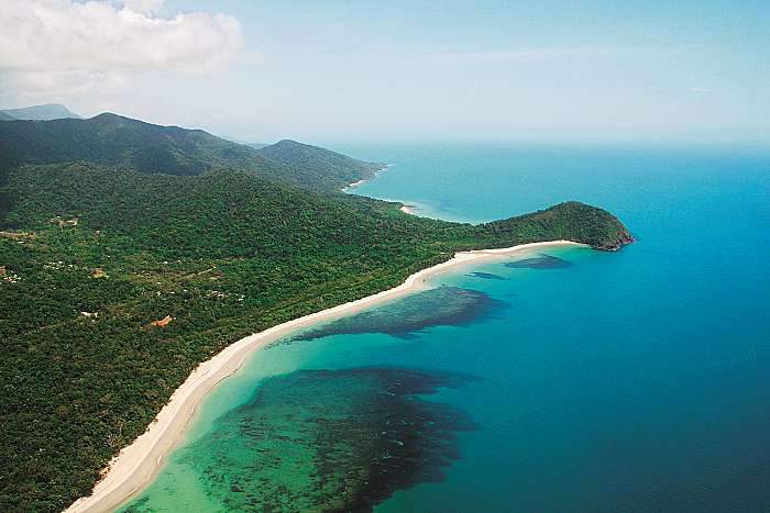 product image for 1 Day Daintree & Cape Trib Rainforest Experience ex Cairns & Northern Beaches