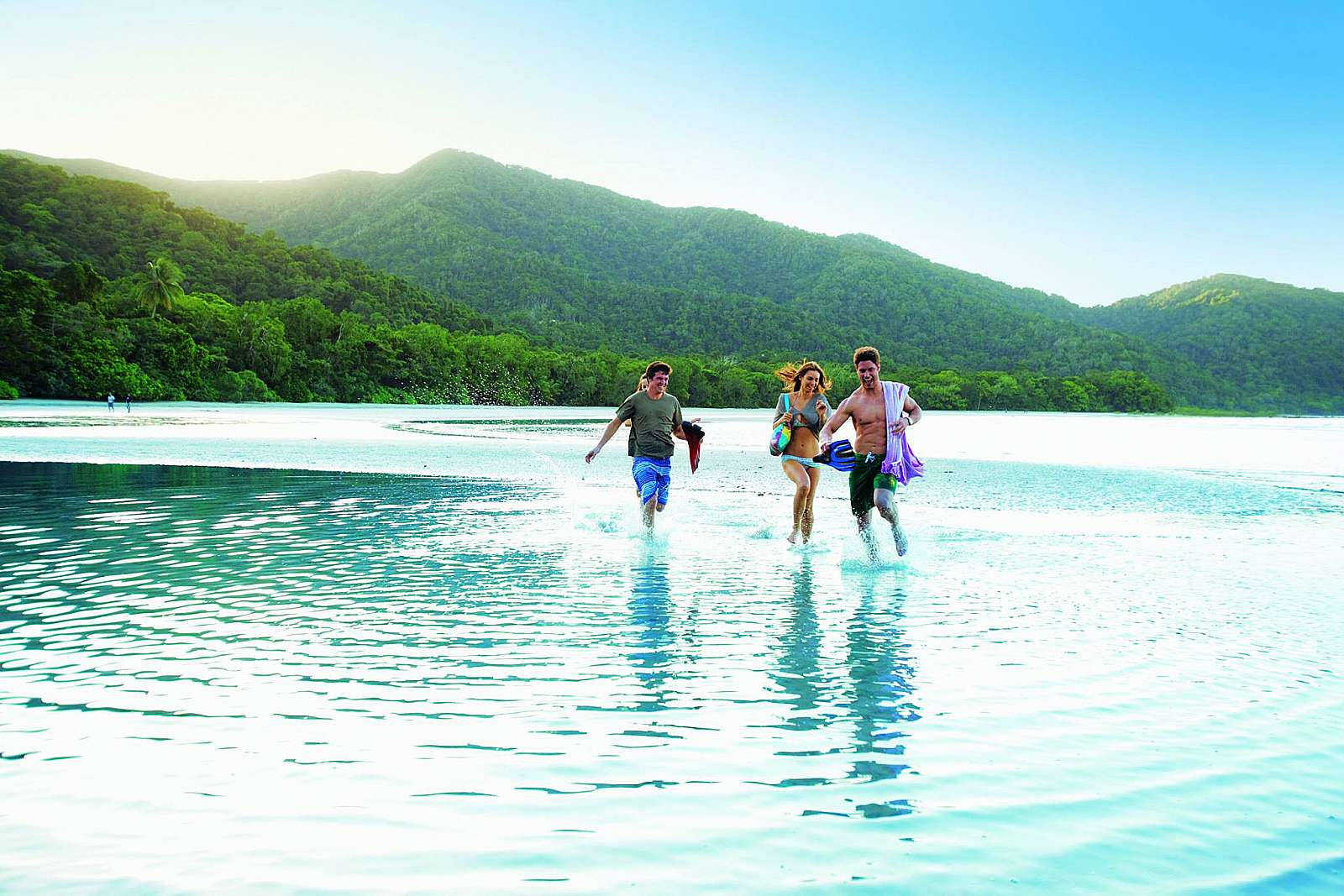 Feature image for *Cape Tribulation Day Tour