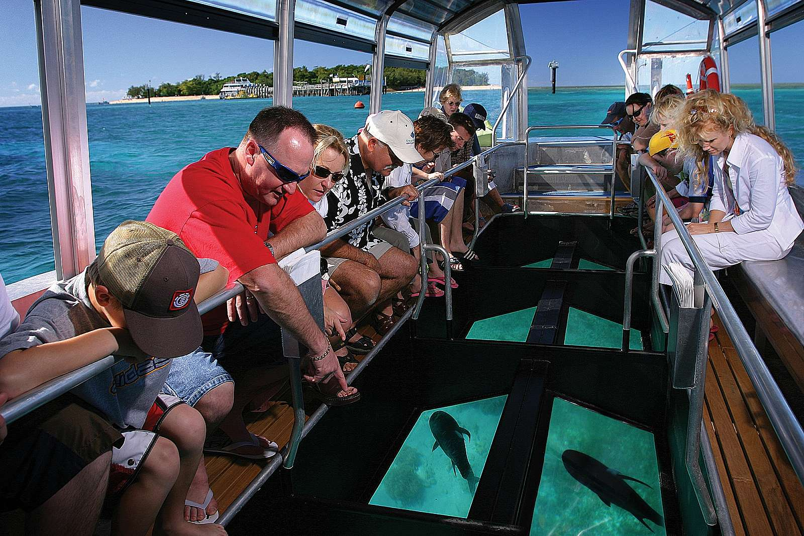 Image for Big Cat Green Island Reef Cruises - Half Day 1pm Departure