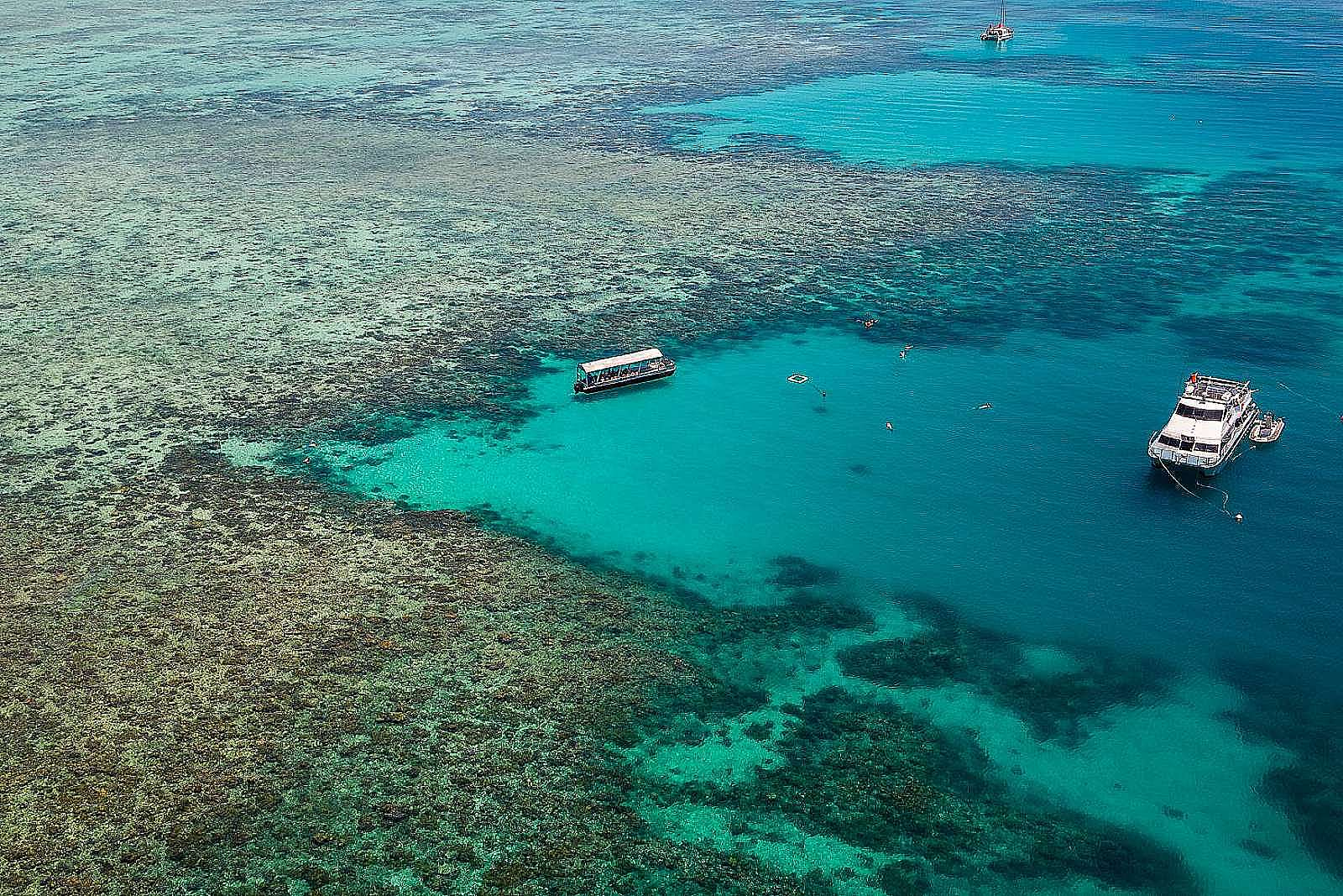 Feature image for Upolu Cay Reef Cruise