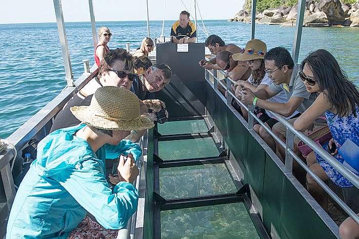 product image for Fitzroy Activity Pass 1 - Glass Bottom Boat