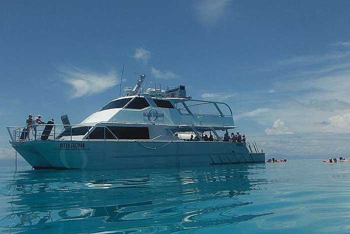 product image for Upolu Cay Reef Cruise & Introductory Diving