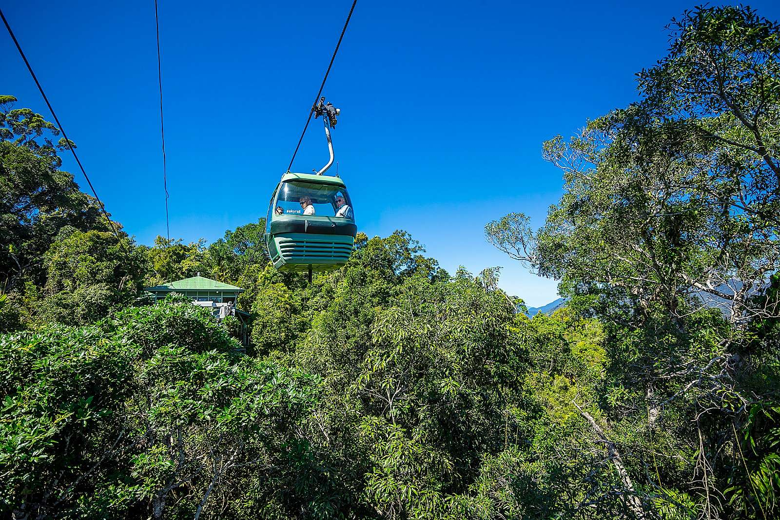 Image for Tropic Wings - Grand Kuranda ex Port Douglas
