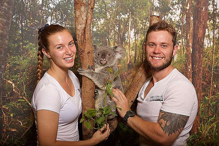 product image for Friends in the Rainforest (Koala Gardens & Birdworld)